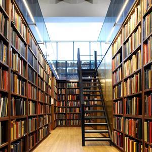 Библиотеки Гаврилова Яма