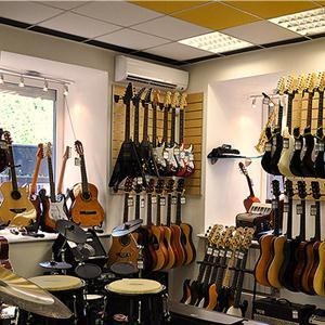 Музыкальные магазины Гаврилова Яма