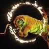 Цирки в Гавриловом Яме